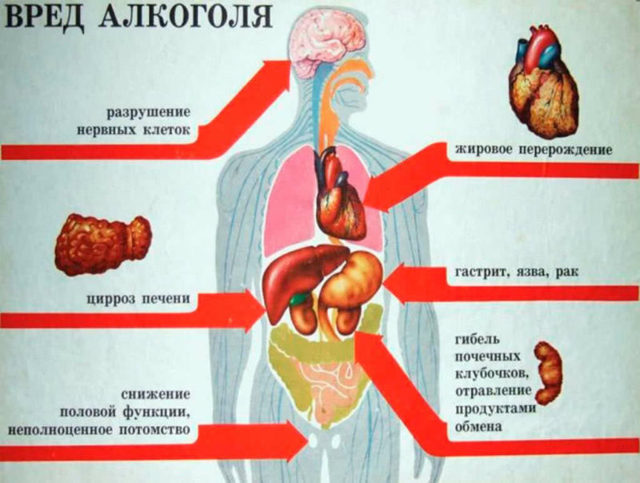Белая горячка: симптомы и последствия алкгольного делирия