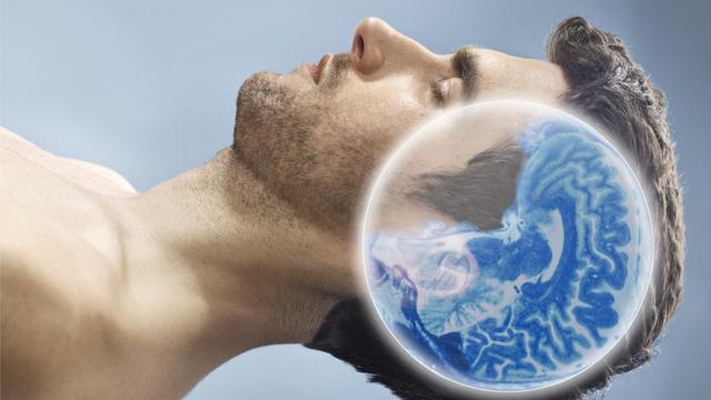 Что делает человеческий мозг во сне: активность органа