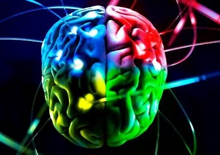 Возможности мозга человека: о чём мы не подозреваем
