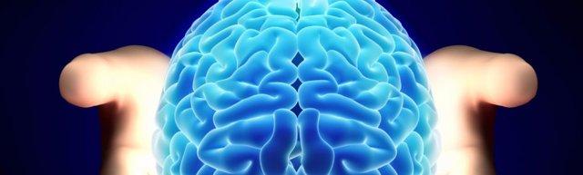 Транскраниальная магнитная стимуляция головного мозга человека