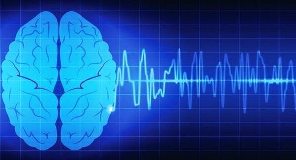Волны мозга: пять частотных диапазонов работы органа