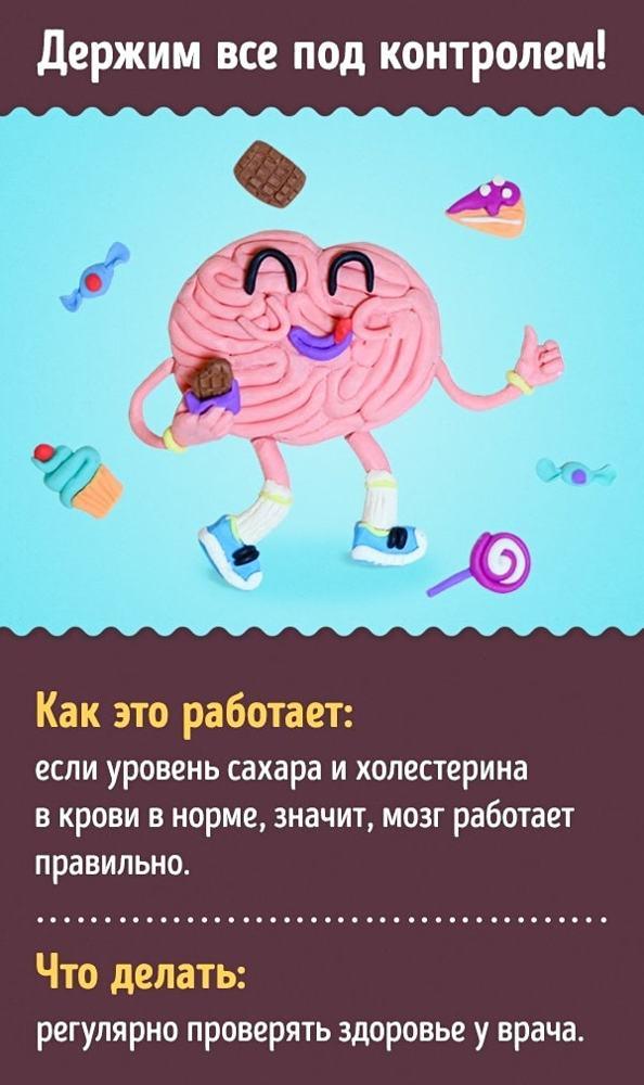Как улучшить работу мозга: проверенные временем способы