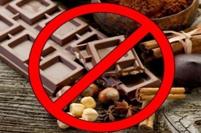 Шоколад для мозга: польза от продукта для работы ЦНС