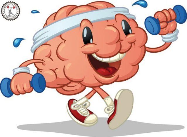 Прапараты для улучшения работы мозга и памяти