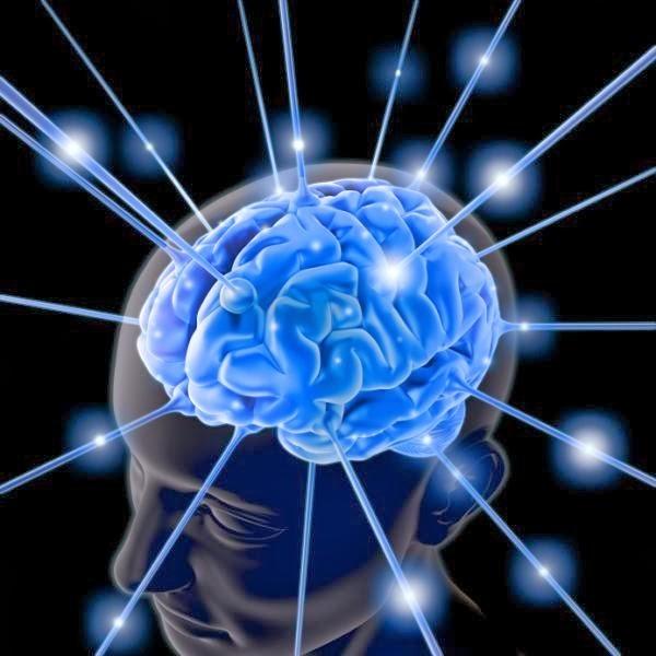 Книги для развития интеллекта: какие следует прочитать первыми