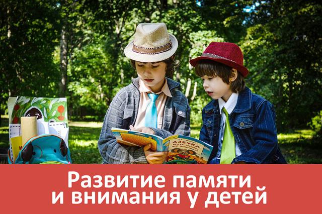 Развитие интеллекта у ребёнка и взрослого человека