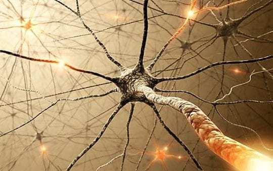 Сосуды мозга: заболевания, их причины и признаки