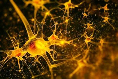 Биоакустическая коррекция головного мозга человека