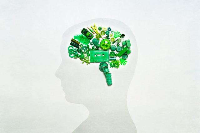 Как развить правое полушарие мозга человека: упражнения и советы