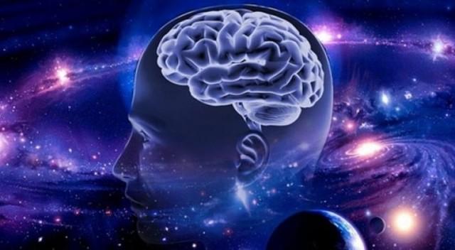 Книги про мозг человека: строение, потенциал, возможности