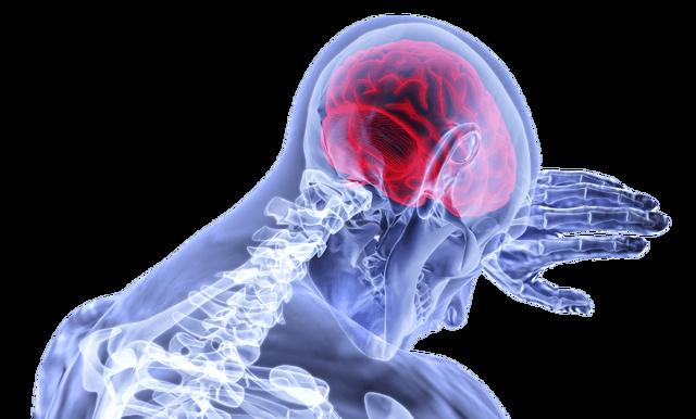 Лечение рассеянного склероза: медикаментозное и народное