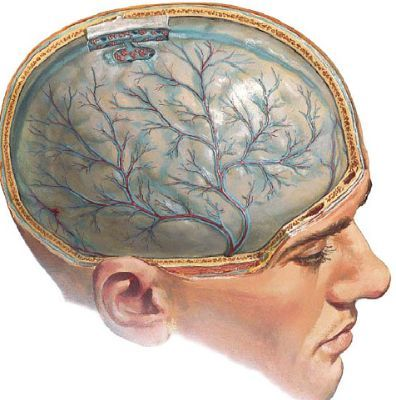 Второй день болит голова: причины недомогания