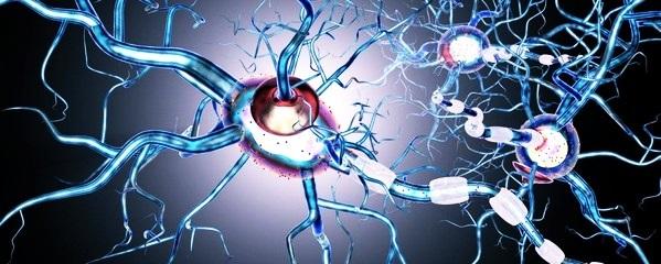 Поражение нервной системы: периферической и центральной НС