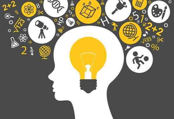 8 типов интеллекта: классификация по Говарду Гарднеру