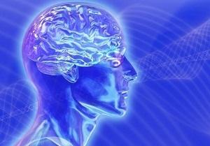 Гормоны гипофиза: виды, назначение, функции