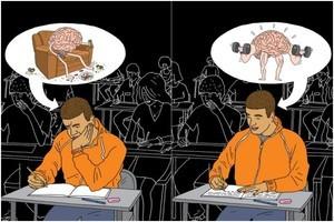 Работоспособность мозга: как улучшить и от чего зависит