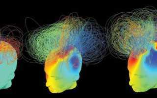 Активность мозга человека: электрическая, биоэлектрическая